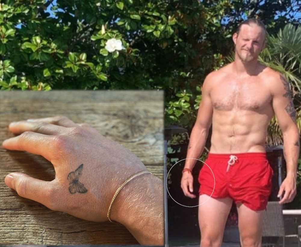 Alexander Ludwig butterfly hand tattoo